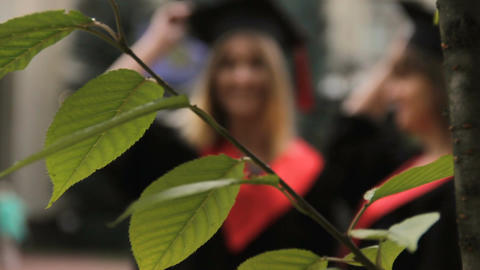 Two female students throwing graduation caps up in the air during photoshoot Footage