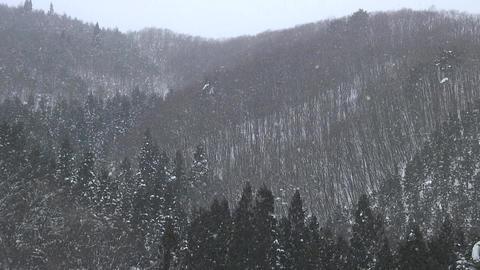Snow Fall / Winter / Mountains - Shizukuishi (Iwate, Japan) - Fix ビデオ