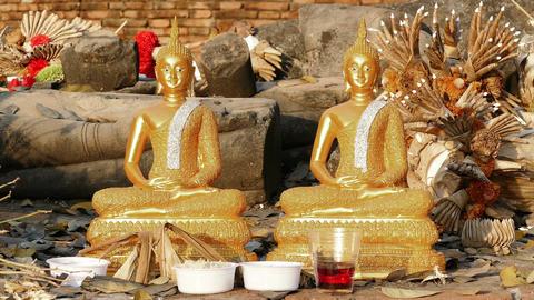 Buddha Statues Temple Leaf Fall 4K Footage