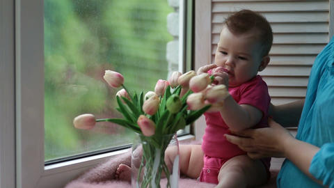 Adorable baby girl playing with tulip flower Filmmaterial
