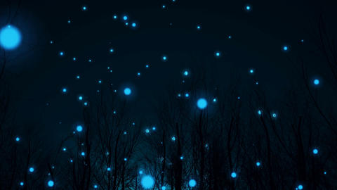 Magic night in silhouette of forest, Stock Animation