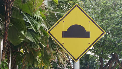 Road Sign Malaysia Palms 4k