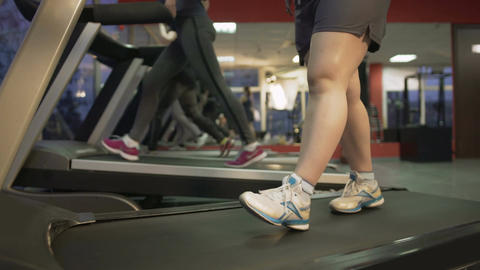 Feet of fat woman walking slowly on treadmill, healthy ladies exercising in gym Footage
