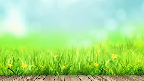 Sky And Grass (4) CG動画素材