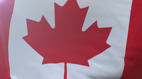 Flag of Canada waving on flagpole in the wind, national symbol of freedom Footage