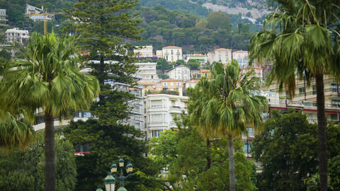 Monaco cityscape with many apartment houses and green trees, homes for rent Footage