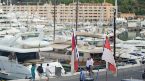 National flags of Monaco flapping in wind, defocused luxury yacht club in harbor Footage