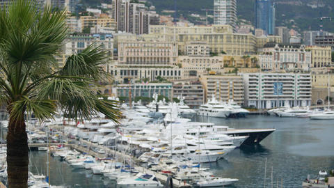 Luxury property in Monaco, many modern apartment buildings, yachts in harbor Footage