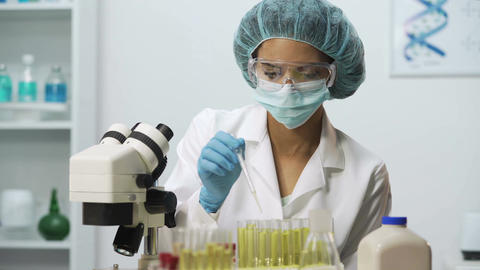 Bacteriologist working in laboratory, female specialist doing medical research Footage