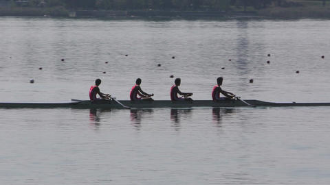 Rowing Championship Coxless Four Man Footage