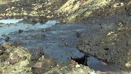 Dump toxic waste, oil lagoon contaminated oil water, soil Filmmaterial
