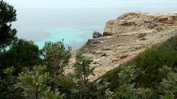Spain Mallorca Island Cala Blava 014 rocky plateau with Mediterranean vegetation Footage