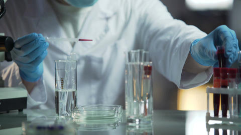 Lab scientist doing research of blood samples to determine genetic diseases Footage