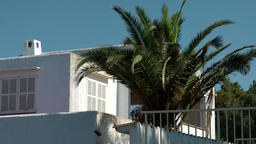 Spain Mallorca Island Cala Blava 029 penthouse apartment with big palm tree Footage