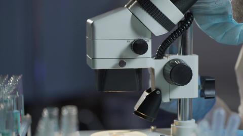 Lab assistant examining blood sample, calculating erythrocytes and leukocytes Footage