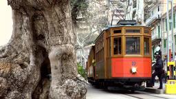 Spain Mallorca Island Sóller 025 wooden tram on Port Sóller promenade Filmmaterial