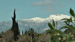 Spain Mallorca Island various 003 snow covered mountains behind plants Footage