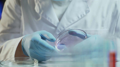 Laboratory worker conducting research testing consistency of biological material Footage