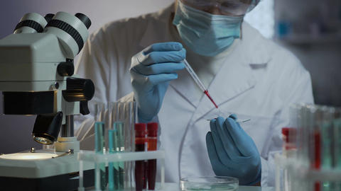 Modern medical laboratory offering wide range of tests based on blood samples Footage