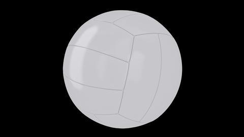 Valleyball Animation