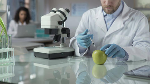 Lab assistant injecting apple with portion of pesticide for marketable condition Footage