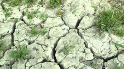 Summer drought, drying up the soil, climate change, environmental disaster Footage