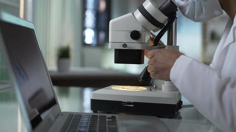 Laboratory worker studying samples under microscope, typing results on computer Footage