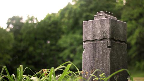 Blank Generic tribal greco roman rock cube ruined statue obelisk in wilderness Footage