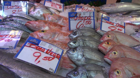Assortment various fresh fish in market. Seafood background in motion Footage