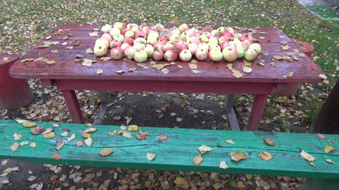 Leaves falling on apples placed on table in the autumn Footage