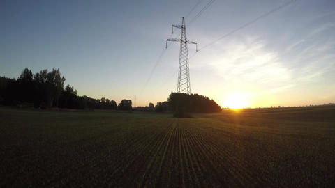 morning sunrise on field with electric tower and wheat sprouts, time lapse 4k Footage