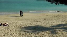 Spain Mallorca Island small town Porto Cristo 017 shadow of palm tree on sands Footage