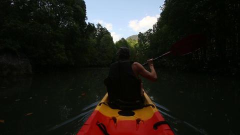 strong elder man rows kayak among mangrove trees Footage