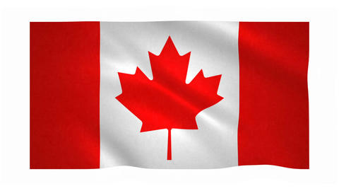 Flag of Canada waving on white background Animation