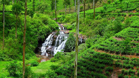 Zooming video of small streaming waterfall at tea plantations in Sri Lanka Footage
