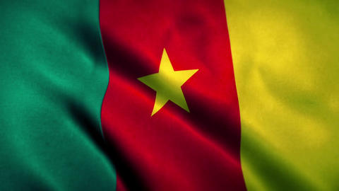 Cameroon Flag Blowing in the Wind Animation