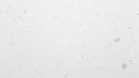 Seamless loop of real snow falling Footage