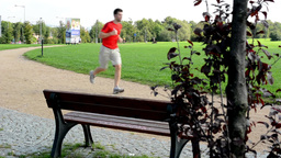 people in the park (in city) - green nature (grass and trees) - pavement - rolle Footage