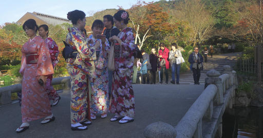 Kimono girls take selifies in Japanese Garden ライブ動画