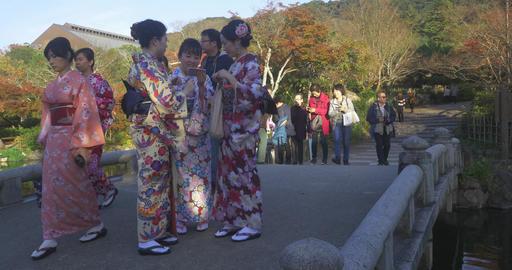 Kimono Girls Take Selifies In Japanese Garden stock footage