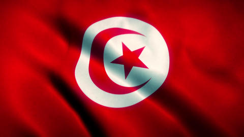 Tunisia Flag Blowing in the Wind Animación