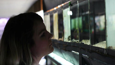 Woman in fish store shopping for new pets in aquarium Footage