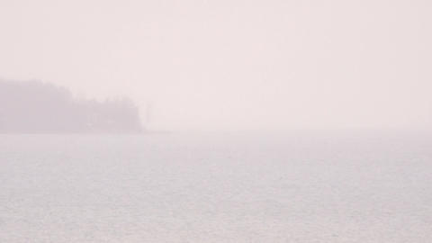 Fog and lake. Tranquil nature scene with copy space Live Action