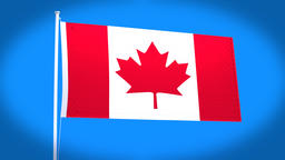 the national flag of Canada CG動画