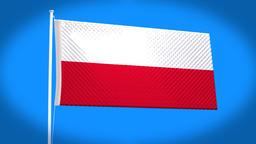 the national flag of Poland CG動画