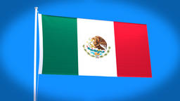 the national flag of Mexico CG動画