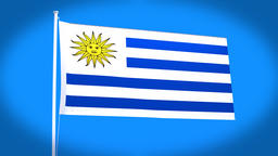 the national flag of Uruguay CG動画