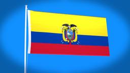 the national flag of Ecuador CG動画