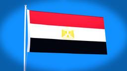 the national flag of Egypt CG動画