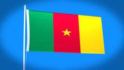 the national flag of Cameroon CG動画